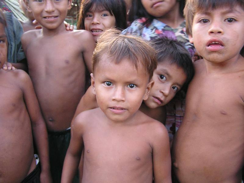 Peruvian Amazon Testimony 2015